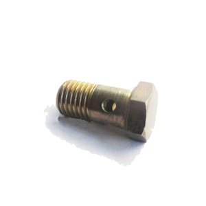 Deutz BFM2011 Hollow Screw 01119246